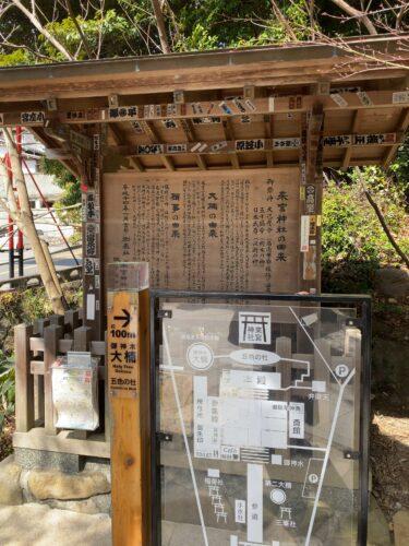 熱海最大のパワースポット「来宮神社」