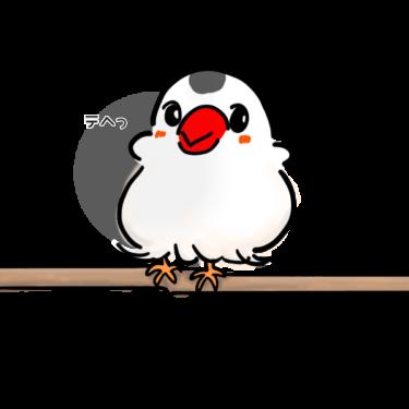 文鳥あいちゃんのアイコン作りました(笑)